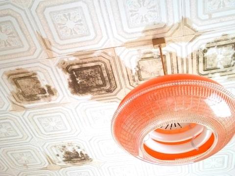 天井からの雨漏り画像